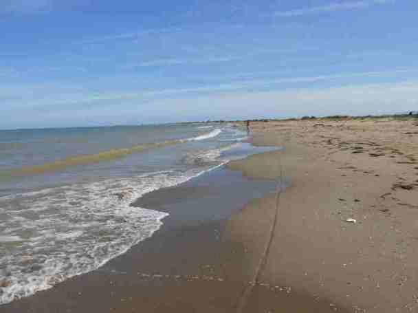 Playa de la Bassa de l'Arena, Deltebre (Foto: Lluisma)